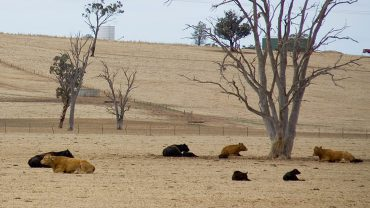 "Future2 special ""drought relief"" grants to help young Aussies"